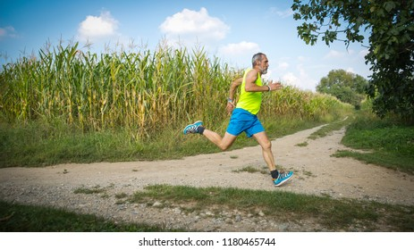 Runner in the countryside