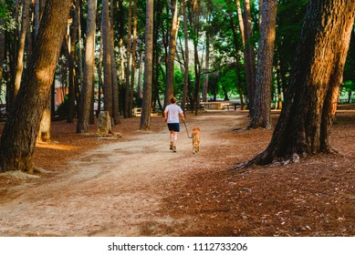 runner with his dog walking through the forest