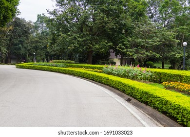 The​ country​ road​ running through​ tree​ or​ path​ way​ with​ tree​ nature​ Park​ garden​ in​ summer​ ​ landscape​