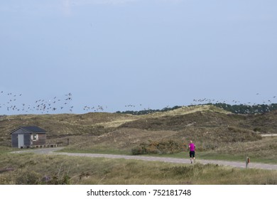 Running in beautiful nature reserve Texel, The Netherlands