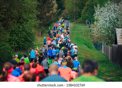 Running colorful crowd in green spring nature, hobby athlete sport photo