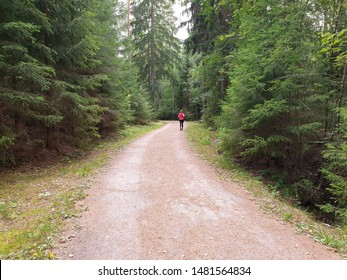 Running in a forest path. A woman in bright red shirt and black sport pants is jogging on a sand road in the middle of tall spruce trees. Exercising in the nature and focusing on mindfulness.