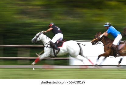 Running horses at a polo game