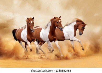 Running horses is symbolizes success and power