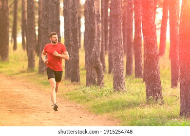 Running man. Male runner jogging at the park. Guy training outdoors. Exercising on forest path. Healthy, fitness, wellness lifestyle. Sport, cardio, workout concept