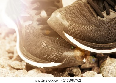 Running shoes before practice. Trail running shoes in a park, close-up sneakers. Sport active outdoor lifestyle concept. Horizontal photo banner for website header design. Sun beam lights.