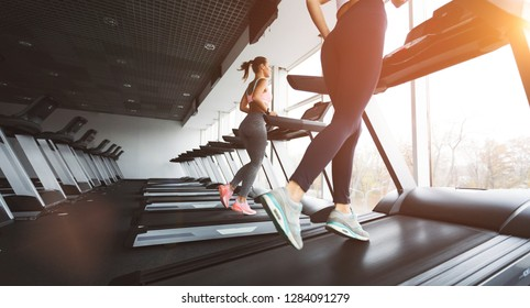 Running together. Women running on treadmill and looking away at gym