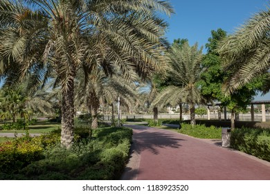 Running track lined with palm trees in Al Barsha Pond Park, Dubai, United Arab Emirates. The park is a popular recreational space.