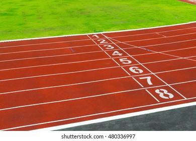 Running track on the stadium / Running track