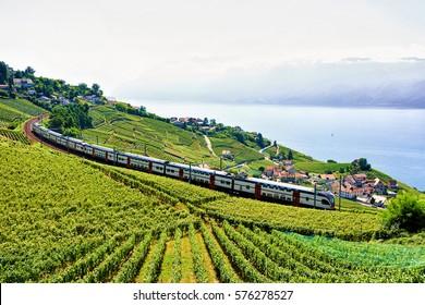 Running train at Lavaux Vineyard Terraces hiking trail near Lake Geneva and Swiss Alps, Lavaux-Oron district, Switzerland