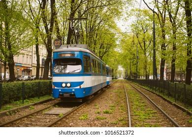 Running trams in the city center of Krakow, Poland