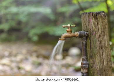 Running water from an outdoor faucet in the woods.