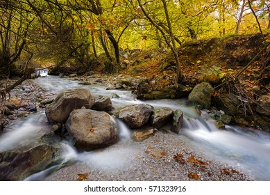 running water in the river into the forest, Krinofyta, Kalavryta, Greece