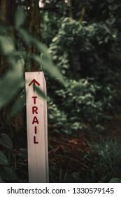 Runnning trail at a local park