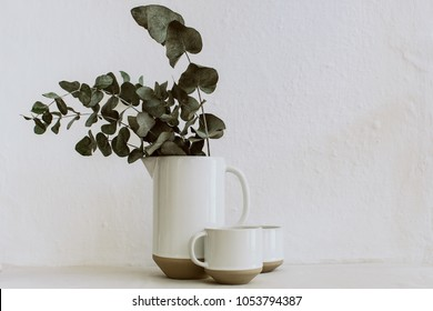 Rural abstract background with vases and eucalyptus brunches . Rustic scene
