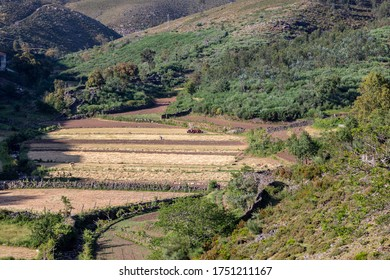 Rural and agricultural life of a remote village lost in the middle of Serra da Freita, Arouca, Portugal