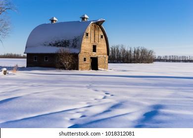 Rural Alberta winter landscape with farm barn and fresh snow
