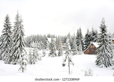 a rural area in the mountains of Romania