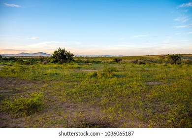 Rural arid dry bush and grassland with blue cloudy skyline landscape in South Africa