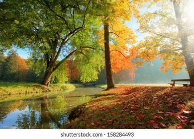 Rural autumn park view in beautiful color mood