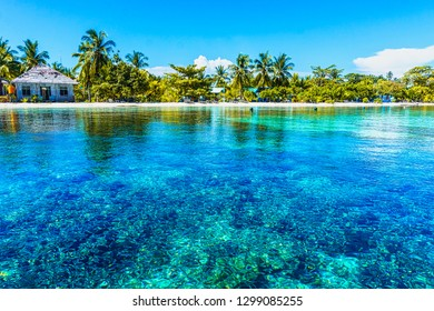 Rural coastal village set amid coconut palms facing white sand beach, clear blue ocean and thriving healthy coral reefs. Raja Ampat, West Papua, Indonesia.