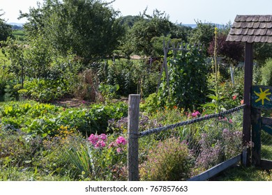 rural cottage garden in hot summer day of july in south germany near city stuttgart and munich