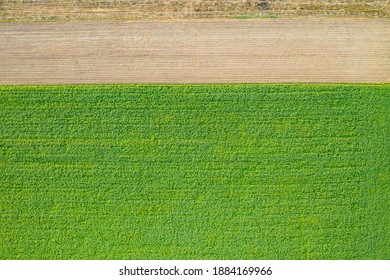 Rural country from directly above with one third of brown field and rest of green meadow. Horizontal structure in nature from drone perspective. Farmland with growing plants.