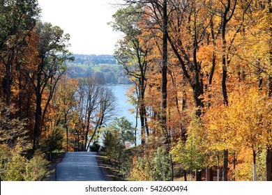 Rural country road with bright fall foliage in Wisconsin with Lake Geneva in the background.