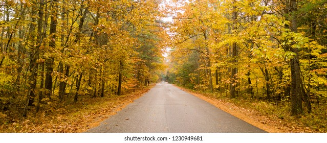 A rural country road travels between trees showing bright fall color as winter approaches
