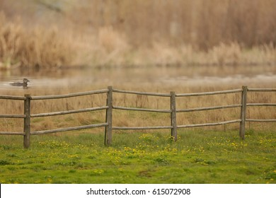 A rural country scene with green grass, a fence, a duck in the lake and a blurred  brown background.