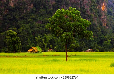 Rural country side, Laos