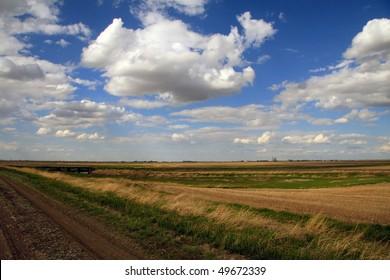Rural Dirt Road alongside hay field under dramatic prairie sky