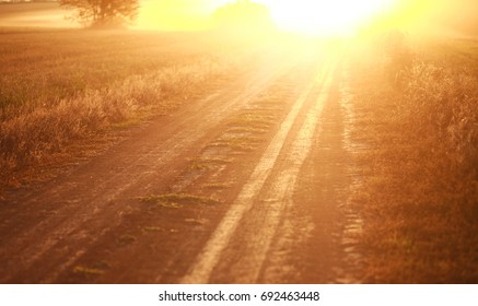 Rural dirt road on a background of the bright sun