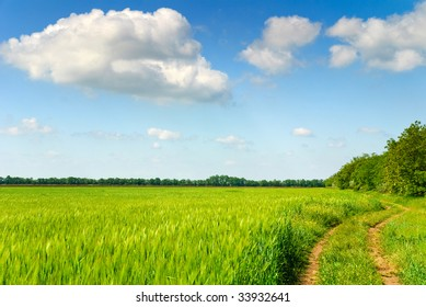 rural dirt road through green field with bright blue cloudscape