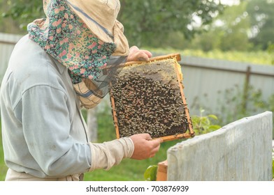Rural earnings in the form of beekeeping