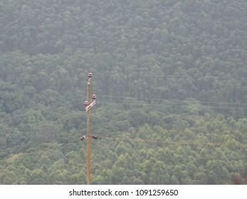 Rural electrification India