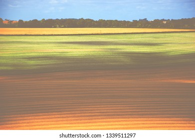 Rural England landscape. Wiltshire. Farming land. Rows. A game of sunset sun light and shadow. Toned photo. Haze effect. Dreamy nature background.