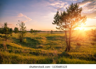Rural evening landscape. Sunset with beautiful sky over field