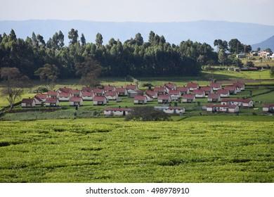 Rural farm households