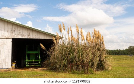 A rural farm scene white barn shed covering farming machinery and tools