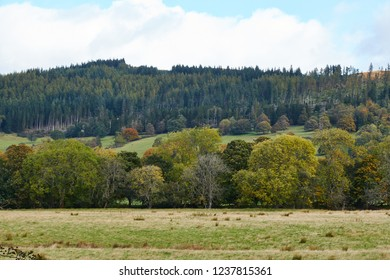 Rural farmland at Callander, in Perthshire.