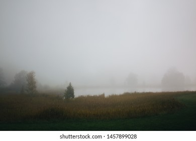 Rural foggy landscape with lake and trees during misty morning