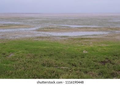 rural friesland landscape