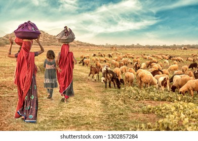 Rural girl walking at farm house with flock of sheep