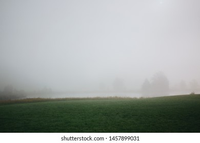 Rural green meadow in fog against lake and trees during misty morning