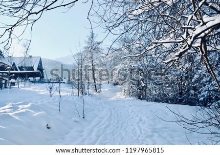 Rural house with a fence in winter. Village after snowfall