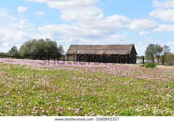 Rural House Landscape Background