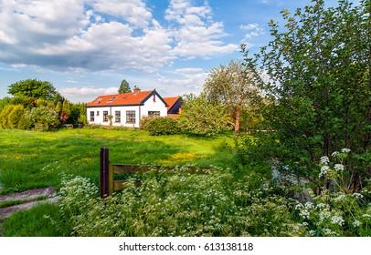 Rural house in summer nature landscape