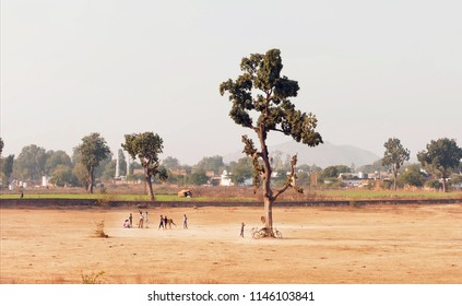 Rural India landscape. Village kids playing cricket outdoor, on playground with one tree area