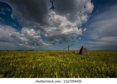 rural landscape in Burgenland with wooden standpipe, reed hut and yellow flowers